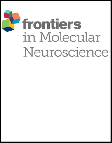 Frontiers in Molecular Neuroscience
