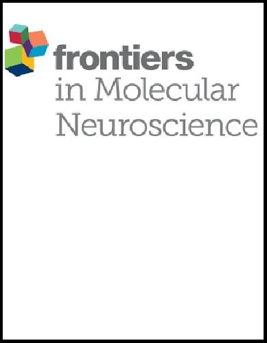 Frontiers in Molecular Neuroscience