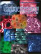 http://www.siicsalud.com/tapasrevistas/gastroenterology.jpg