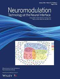 Neuromodulation: Technology at the Neural Interface
